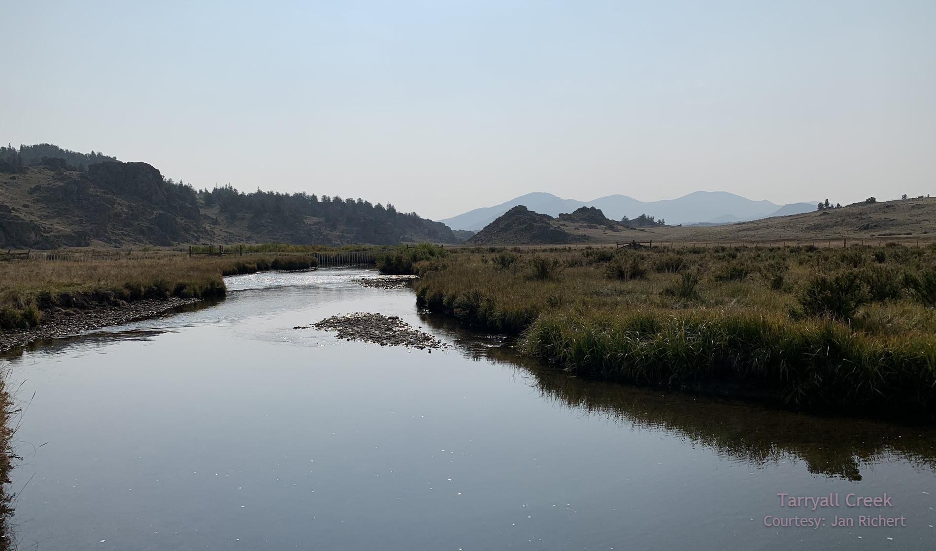 Tarryall_Creek.jpg